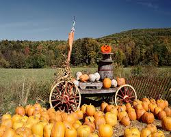 Great Pumpkin Patch Frederick Md by Two Admissions To Lawyer U0027s Farm Thurmont Md Certifikid