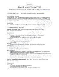 Branch Manager Sample Resume Retail Resumes