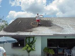 never clean your roof again apple roof cleaning ta florida