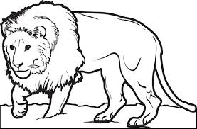 Male Lion Coloring Page For Kids