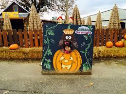 Halloween Lexington Ky 2014 by Adoption Update Roxy U0027s 1st Halloween U0026 1st Trip To Apple Hill
