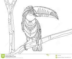 Toco Toucan Coloring Page With Coloring Pages For Children Coloriage Toucan