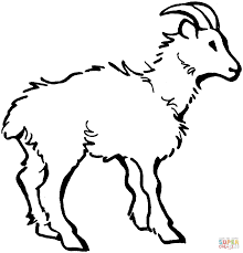 Goats Coloring Pages New Goat