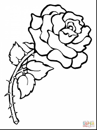 Beautiful Coloring Pages With Roses And Thorns Rose Page Free