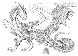 Coloringsco Adult Coloring Pages Dragons
