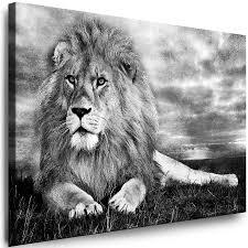 dekoration leinwand bilder tiere löwe wandbilder