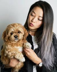 pin by fashion s on arden cho style pinterest arden cho and