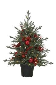 Potted Christmas Tree by Clearance Sale 4 Heritage Spice Potted Christmas Tree