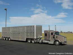 100 Cattle Truck For Sale Ing LLC Kenworth T800 With 4 Axle Bullwagon Tr Flickr