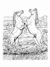 Horse Coloring Pages Fighting