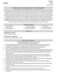 Account Analyst Resume Sample