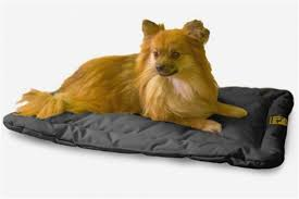 Chew Resistant Dog Bed by Chew Proof Dog Beds Delightful Shape Proog Michaelsala Com