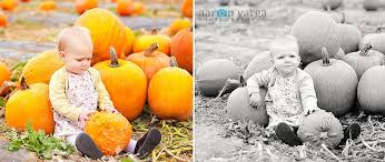 Pittsburgh Area Pumpkin Patches by Pumpkin Patch Photography Pittsburgh Baby Photographer