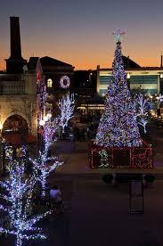 Bellevue Singing Christmas Tree by 26 Best Christmas In Newport Ri Images On Pinterest Newport