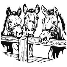 Three Horses Hanging Out Decal Sticker - Car Decals And Stickers Vinyl Luxury Horse Decals For Car Windows Northstarpilatescom 52017 Ford Mustang Pony Steed Outline Side Stripes Decal Head Trucks Etsy Barrel Racing Rodeo Trailer Vinyl Window Laptop Ride More Worry Less Sticker 2 X Forward Running Horse Decals Awesome Graphics Custom Made Magnetic Signs Reflective Horses Cowboy Mountains Scenery Decal Decals Graphics 82 At Superb Graphics We Specialize In Decalsgraphics And