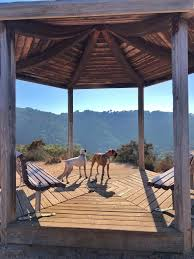 100 Toro Canyon Park California AllTrails