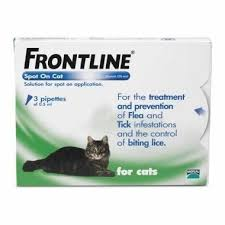 flea treatment for cats frontline for cats save 50 today pet drugs