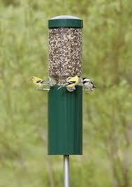 Duncraft BirdsChoice Classic Feeder with Pole & Baffle
