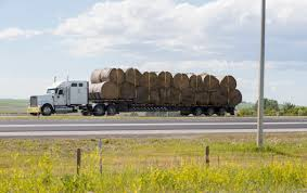 Hay Transportation Assistance Program Now Open   North Dakota ... Hay For Sale In Boon Michigan Boonville Map Outstanding Dreams Alpaca Farm Phil Liske Straw Richs Cnection Peterbilt 379 At Truckin Kids 2013 Youtube Bruckners Bruckner Truck Sales Lorry Stock Photos Images Alamy Mitsubishi Raider Wikipedia For Lubbock Tx Freightliner Western Star Barmedman Motors Cars Sale In Riverina New South Wales On Economy Mfg Dennis Farms Equipment Auction The Wendt Group Inc Land And
