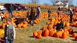 Pumpkin Patch Ct by How Visiting A Pumpkin Patch Can Help Kids Practice Physical Therapy