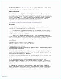100 Agile Resume Project Initiation Document Template Or 45 Lovely