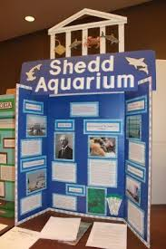 Science Fair Project 2013