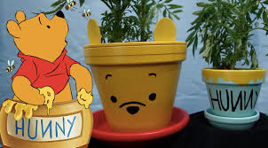 Winnie The Pooh Pumpkin by Dreamers Box Disney Diy Projects