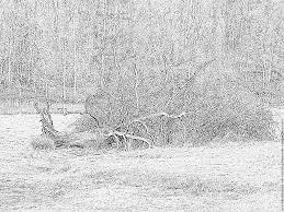 Le Dessin De Paysage Inspirant D Cor Paysages Montagne Coloriage D39automne Ce1