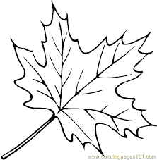 Leaf Coloring Page 02