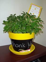VIEW IN GALLERY Chalkboard Flower Pot