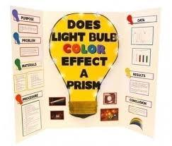 best 25 science fair board layout ideas on science