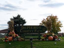 Nj Pumpkin Picking by Depiero U0027s Farm Stand U0026 Greenhouses Localharvest