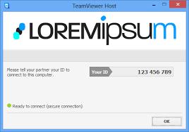 TeamViewer Custom Modules