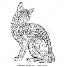 Coloring Book For Adult Illustration Cat