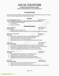 Resume Summary Examples Science Free Website Templates
