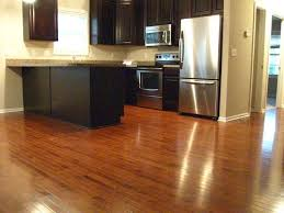 Gunstock Maple Kitchen Floor Contemporary
