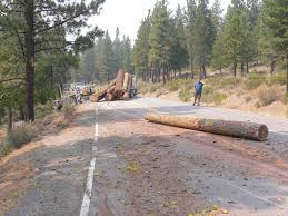 100 Logging Truck Accident 82813 The Sierra County Prospect