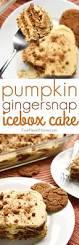 Easy Pumpkin Desserts Pinterest best 25 pumpkin dessert ideas on pinterest pumpkin recipes