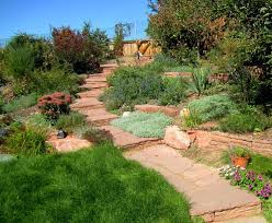Red Flagstone Landscape Rustic With Stone Walkway Denver Junk ... Chaos Untidy Dorganised Mess Lazy Garden Backyard Junk Rubbish Outdoor Removal 4 Good Edmton Forgotten Yard Microvoltssurge Wiki Fandom Powered By Wikia The Backyard Garden Gets Jifiedfunky Interiors Best Creative Ideas On Pinterest Diy Decor And Chairs Junk Items Vegetable Gardening In A Small 2054 Call 2 Haul Allentown Pa Handpainted Upcycled Art From An Exhibit At The Nc State Sebastopols Quirky Sculptures A Photo Essay