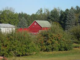 8 Minnesota Orchards And Farms To Visit Before Fall Is Over Herb Apple Gruyere Scones Now Forager The Best Picking Near Atlanta In Map Form Tennessee Seerville Barn Orchard Winesap Apples 18 Bushel Red Orchards Mt Hood Stock Image 24641381 Orchard Front Mount Photo 27690034 Shutterstock Winery Elkhorn Wi Barnquilt Appleorchard Mapping Georgias In Time For Fall Splendor Experience Autumn At Edwards West