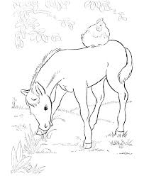670x820 Horse Jumping Coloring Pages Realistic