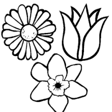 Free Printable Plants And Flowers Coloring Book For Kids Within