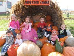 Colorado Pumpkin Patch Farm Camp by Best 25 Pumpkin Patch Corn Maze Ideas On Pinterest Pumpkin
