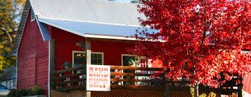 Bake Shop   Larsen Apple Barn North Canyon Road Mapionet Larsen Apple Barn In Camino California Sacramento Running Off The Rees Page 2 At Hill Engagement Session With Corey And Deli Goodies 101611 Youtube 6 Farms You Should Check Out This Fall El Dorado County Acvities Guide Visit 3 109 Bakery Museum Photos Facebook Home