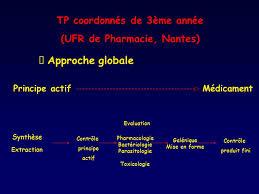 bureau de transcription nantes tp coordonnés de 3ème ée ufr de pharmacie nantes ppt