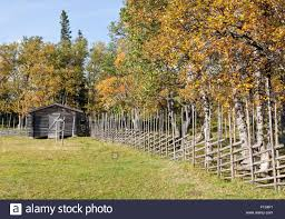 Typical Nordic Fence Made Of Wooden Bars, Rods. Barn In The Stock ... Tammie Dickersons Arstic Journey September 2014 The 7msn Ranch Breakfast From Behind The Barn John Elkington Caroline From 0 To 60 In Well Years Sunrise Behind A Barn On Foggy Morning Stock Photo Image 79809047 Red Trees 88308572 Untitled Document Our Restoration Preserving History Through Barnwood Rebuild Tornado Forming Old Royalty Free Images Sketch For By Hbert Sidney Palmer At Consignorca Shed Olper And Fustein Innervals Vals Valley Towering Sunflower Growing Beside Bigstock