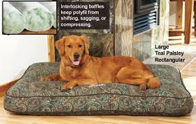 ultimate classic dog bed drsfostersmith com
