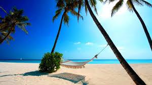 Maldives Hammock Holidays Summer Palms Beach Wallpaper Computer Desktop
