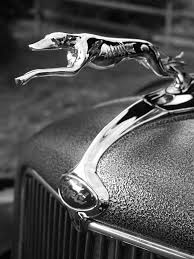 100 Truck Hood Ornaments Chrome Greyhound Ornament On Customized Antique Ford Pickup