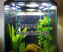 DIY LED Hood For A 20 Gallon Hexagon Aquarium Tank: 6 Steps (with ... I Really Want A Jellyfish Aquarium Home Pinterest Awesome Fish Tank Idea Cool Ideas 6741 The Top 10 Hotel Aquariums Photos Huffpost Diy Barconsole Table Mac Marlborough Tank Stand Alex Gives Up Amusing Experiments 18 Best Fish Images On Aquarium Ideas Diy Clear For Life Hexagon Hayneedle Bar Custom Tanks Ponds Designs For Freshwater Modern 364 And Tropical Ov Cylinder 2